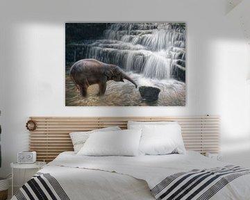 Kleiner Elefant am Wasserfall von Marcel van Balken