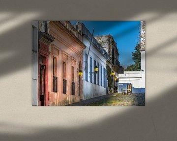 Ruelle idyllique de la vieille ville Colonia Del Sacramento, Uruguay