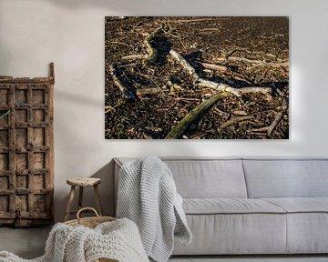 Afgebroken dode wilgentakken op een kale ondergrond von Twentse Pracht