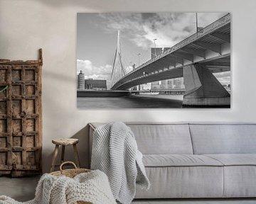 Rotterdam - Erasmusbrücke von Annette Prinssen