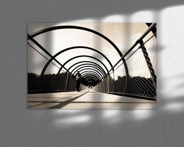 Slinky Springs To Fame (7-140452) B+W von Franz Walter