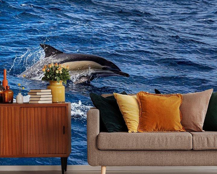 Sfeerimpressie behang: Delphinus delphis (gewone dolfijn) van Easycopters