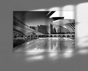 Stadtlinien, Valencia (Schwarz-Weiß) von Rob Blok