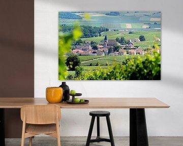 Frankrijk - Champagne / Ville-Dommange van BTF Fotografie