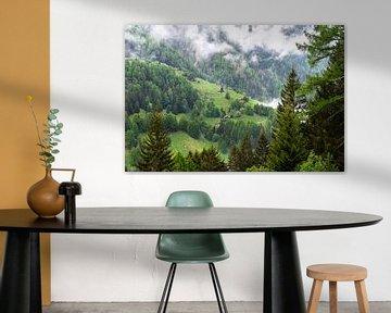 Bergweide in Zwitserland