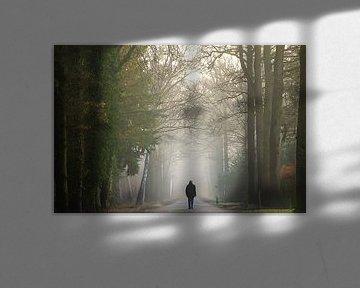Wandelen naar het licht von Jos Erkamp