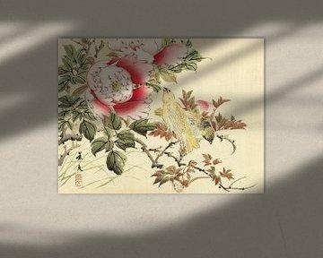 Vogels en pioenrozen, Matsumura Keibun