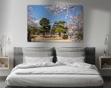 Kasteel van Matsumoto van Marcel Alsemgeest