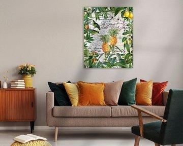 Tropische Früchte von Andrea Haase
