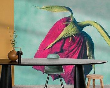 Verwelkende roos van Lavieren Photography