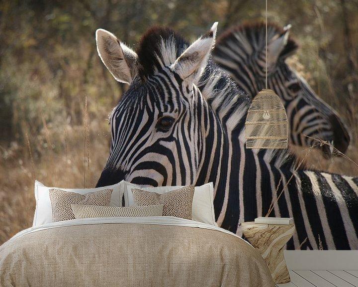 Sfeerimpressie behang: Zebra's Pilanesberg National Parc Zuid Afrika van Ralph van Leuveren