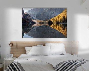 Bois d'automne - Lago di Braies, Dolomites, Italie sur Thijs van den Broek
