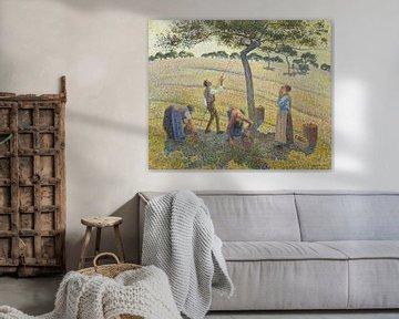 Apfelernte in Eragny, Camille Pissarro