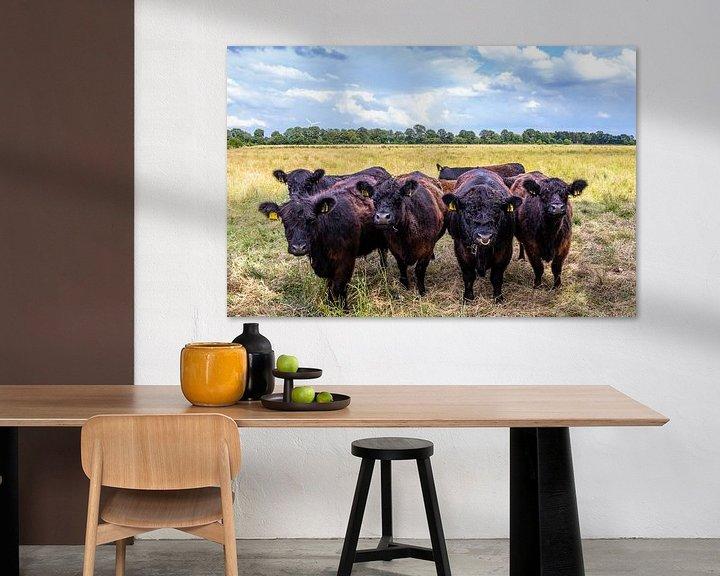 Beispiel: Kühe Bande. von Anjo ten Kate