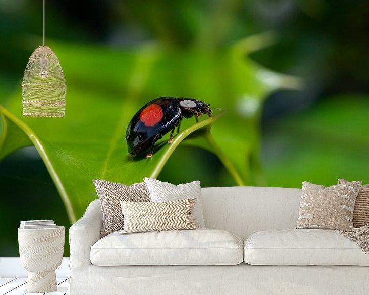 Sfeerimpressie behang: Lieveheersbeestje van Maurice Looyestein