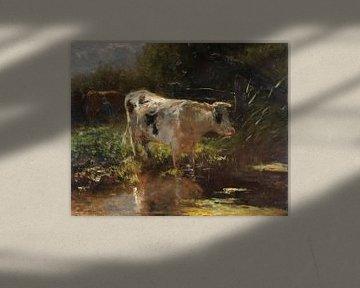 Kuh auf der Grabenseite, Willem Maris