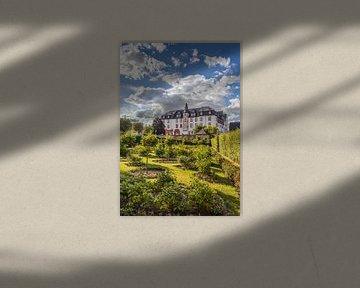 Rosengarten vor dem Residenzschloß Idstein van Christian Müringer