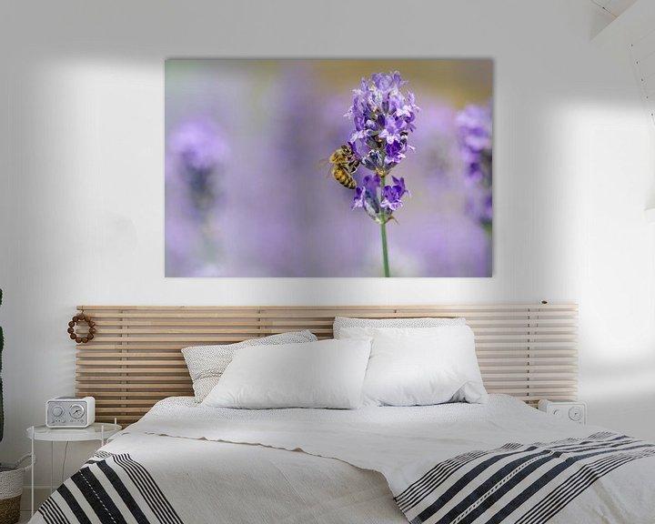 Beispiel: Lavendel und Biene von Mark Bolijn