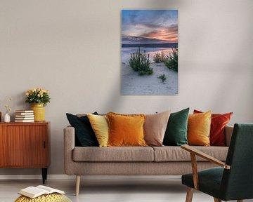 Sonnenaufgang am Gasselterveld, Drente (Hondsrug) von Rossum-Fotografie