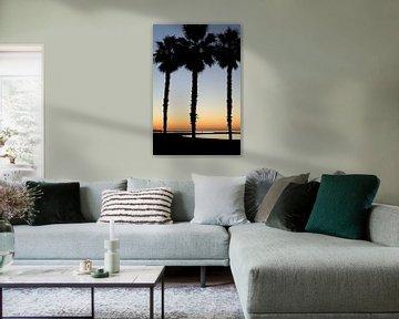 Zonsondergang met palmbomen aan het strand
