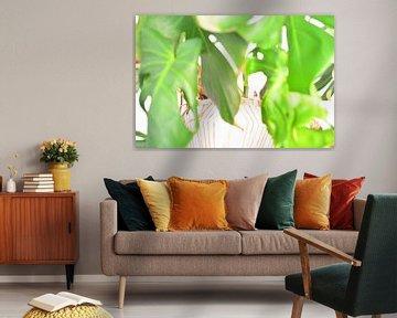 Grüne Pflanze II von Mathias Kuhn