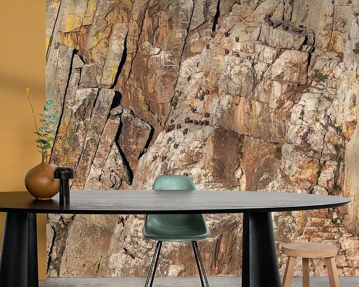 Sfeerimpressie behang: Groep Vale Gieren (Gyps fulvus) in de Extremadura in Spanje. van AGAMI Photo Agency