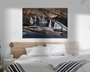 The Ice River van Cornelis (Cees) Cornelissen