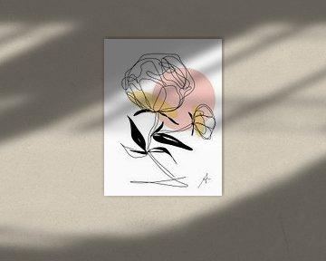 One line drawing Pioenroos van Ankie Kooi