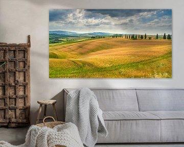 beeld van het landschap in Toscane