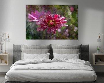 Eine Blume, das Gänseblümchen von Carla van Zomeren
