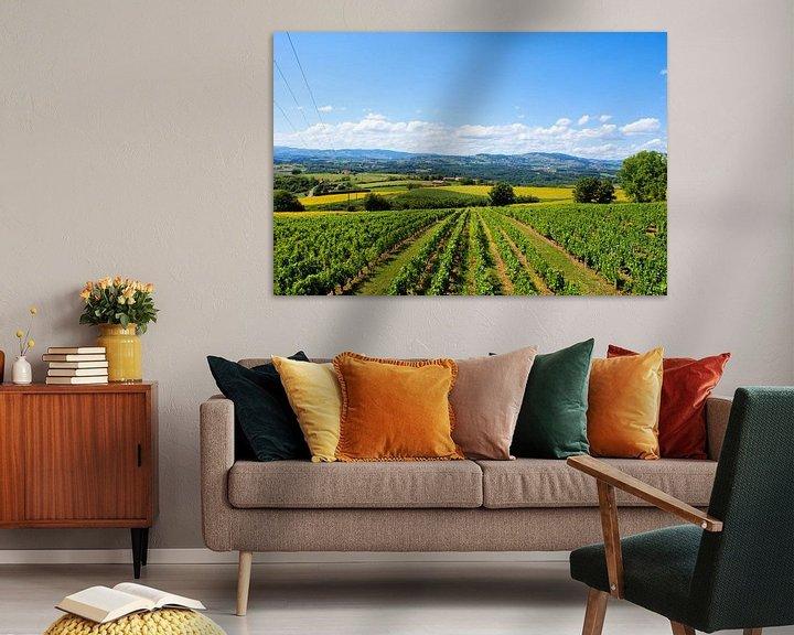 Sfeerimpressie: Wijnvelden in de zon van BTF Fotografie