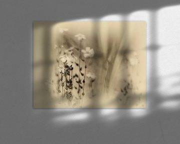 Wiesenblume von Dick Jeukens