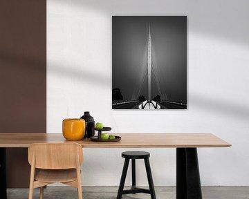 Die Harfenbrücke, zwischen Hoofddorp und Nieuw-Vennep von Henk Meijer Photography