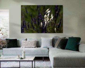 Zo alleen in het paars- So Alone in Purple von Esther Swaager ( Studio Toet)