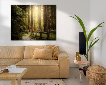 New Light van Kees van Dongen