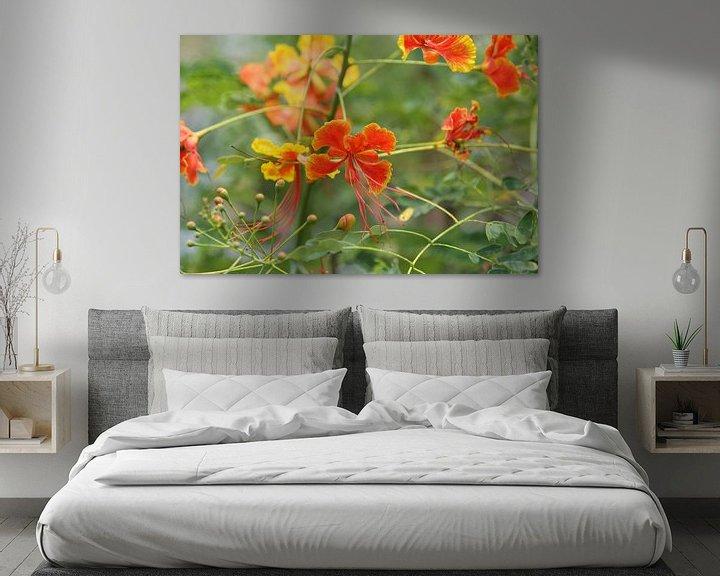 Sfeerimpressie: tropische bloem bloemen van Frans Versteden