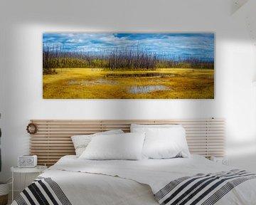Gebrannter Wald, Stikine-Region, Kanada von Rietje Bulthuis