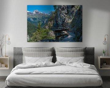 Bisse Torrent-Neuf, Zwitserland