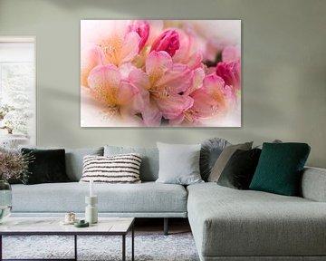 Porzellanblüte von Sonja Tessen