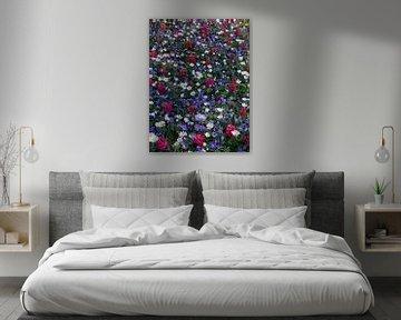 Bloemenveld von Corine Harkes