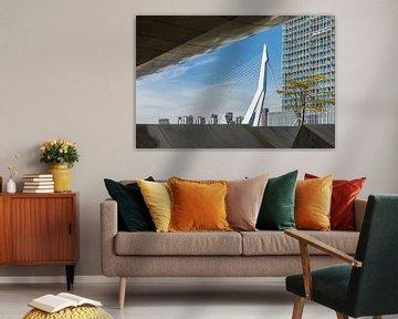 Un aperçu fantastique du pont Erasmus à Rotterdam sur MS Fotografie   Marc van der Stelt