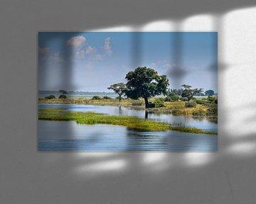 Chobe River van Robert Styppa