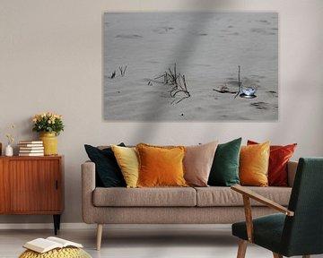 Wrâldbaltsje met blauwe lucht op het strand van Terschelling von Nynke van der Ploeg