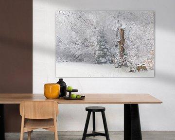 Sneeuw in het voorjaar van Max Schiefele