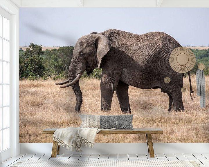 Impression: Olifant in Ol Pejeta Kenia sur Andy Troy