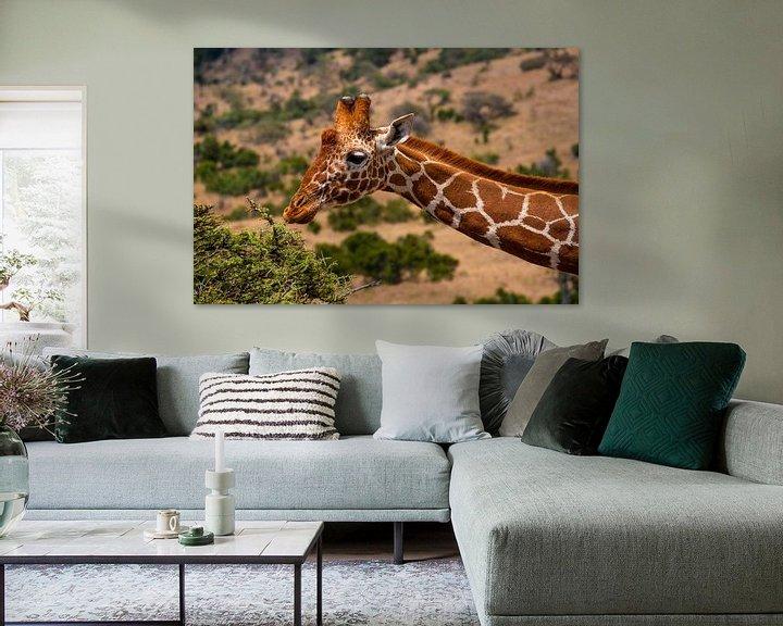 Impression: Giraffe in Kenia sur Andy Troy