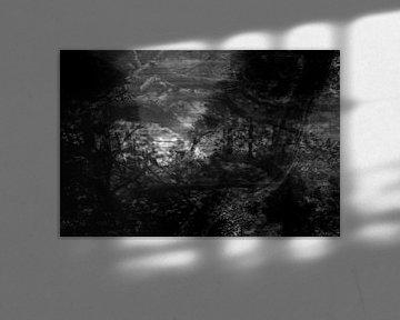 Serie verloren gevoel, beeld 3 von Noortje Zoomers