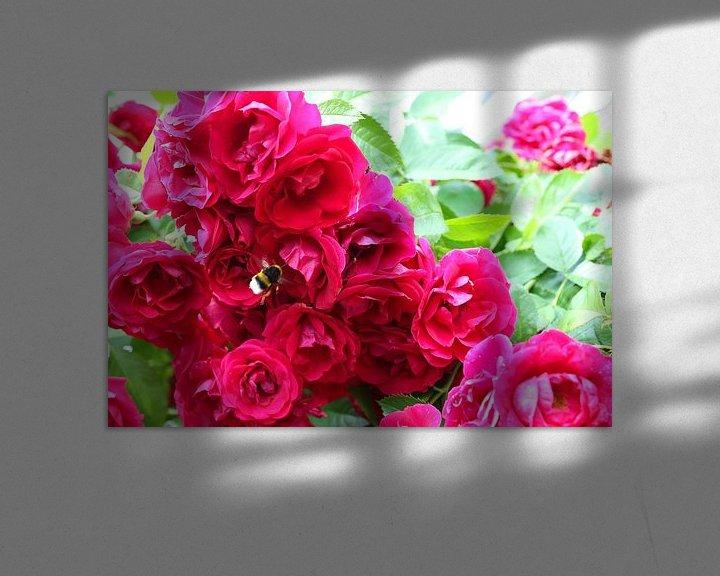 Sfeerimpressie: rozen met hommel van Frans Versteden