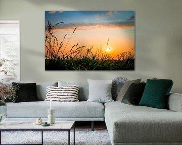 Sunset van Nicky Kapel