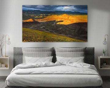Painted Hills, John Day Fossil Beds National Monument van Henk Meijer Photography